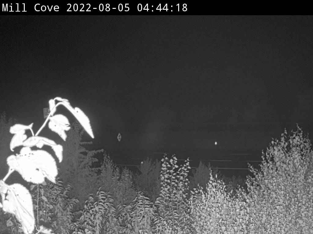 Web Cam image of Mill Cove (NB Highway 2)